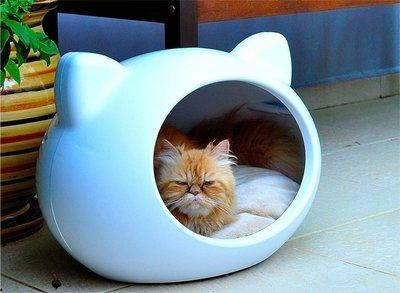 Como fazer o gato dormir na caminha estima o for Cama para gatos