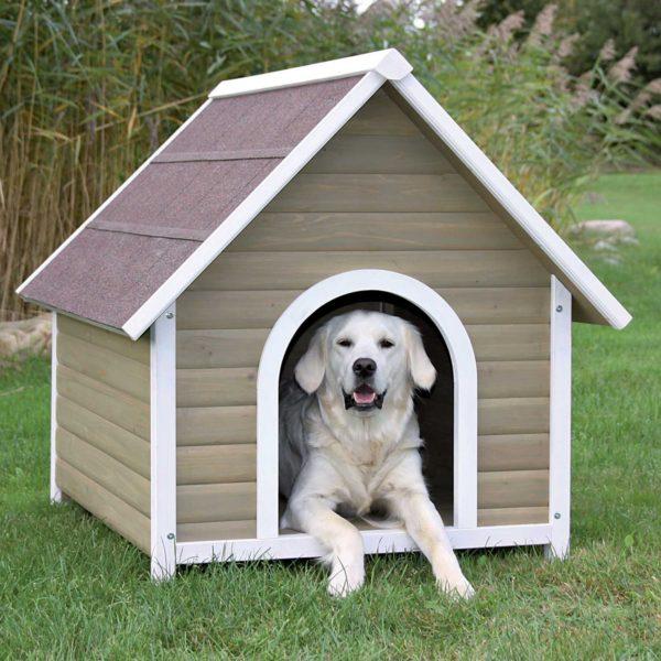 Qual O Tamanho Ideal Para Uma Casinha De Cachorro?